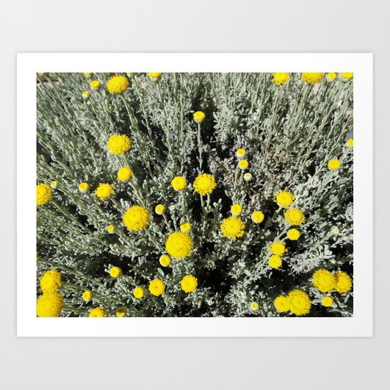 Grey & Yellow Art Print