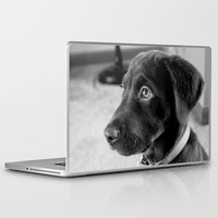 puppy Laptop & iPad Skins featuring puppy by smittykitty