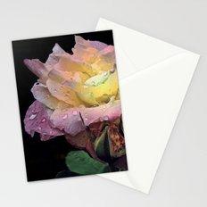 Sensation Stationery Cards