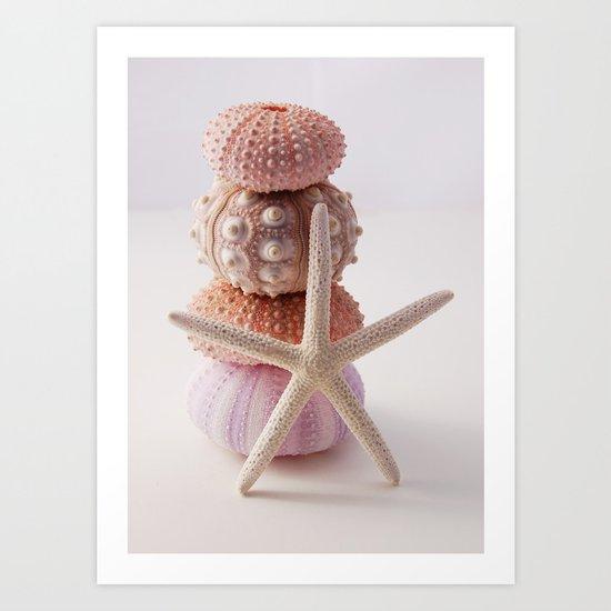 Sea Urchin and Starfish Art Print