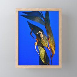 Seahorses Framed Mini Art Print
