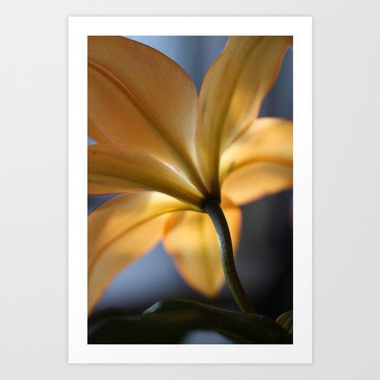 Capturing Light Art Print