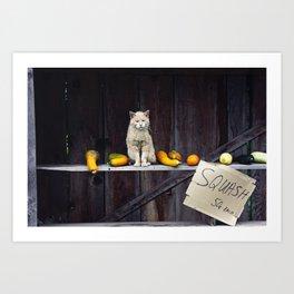 Autumn Cat with Squash Art Print