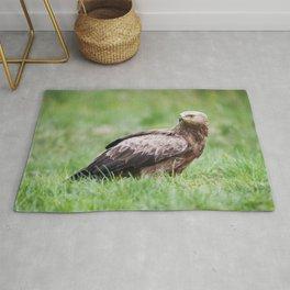 Lesser Spotted Eagle Rug