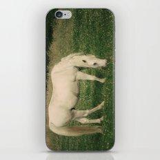 zaldi zurixe iPhone & iPod Skin
