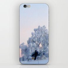 A cold day in Paradise iPhone & iPod Skin