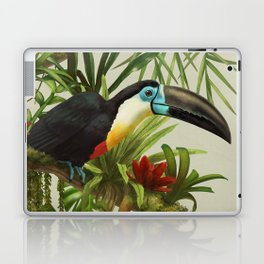 Channel- billed toucan vintage illustration. Laptop & iPad Skin
