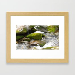 Smokey Mountain National Park Stream Framed Art Print