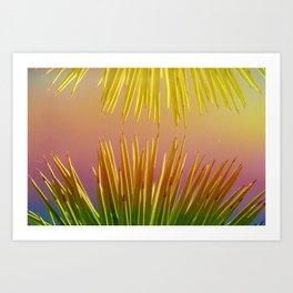 Rainbows in the Desert Art Print