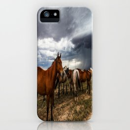 Pride - Horse Watches Over Herd as Storm Approaches iPhone Case