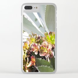 Succulent Layers Clear iPhone Case