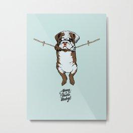 Hang in There Baby English Bulldog Metal Print