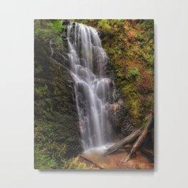 Berry Creek Falls - Big Basin  Metal Print