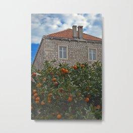 Orange tree in Dubrovnik Metal Print