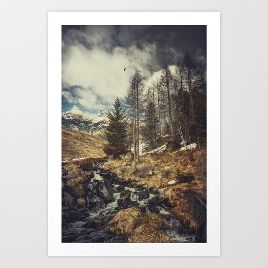 Mountain spring Art Print