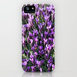 SPANISH LAVENDER AND ONE BEE iPhone Case