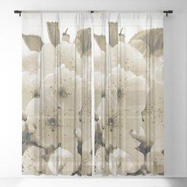 Cherry Blossoms Monochrome Sheer Curtain