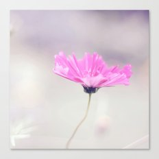 Cotton candy cosmo Canvas Print