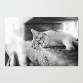 Falling asleep Canvas Print