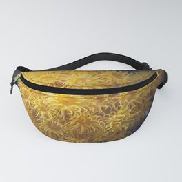 Coral Fanny Pack