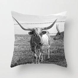 Longhorn Cows Throw Pillow