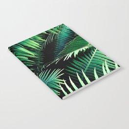 Winter Palms Notebook