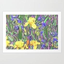 Blue & Yellow Iris Garden - Abstract Art Print