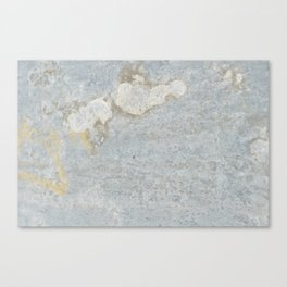 Blueish, rusty and old steel texture Canvas Print