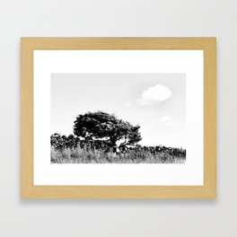 No silver lining Framed Art Print