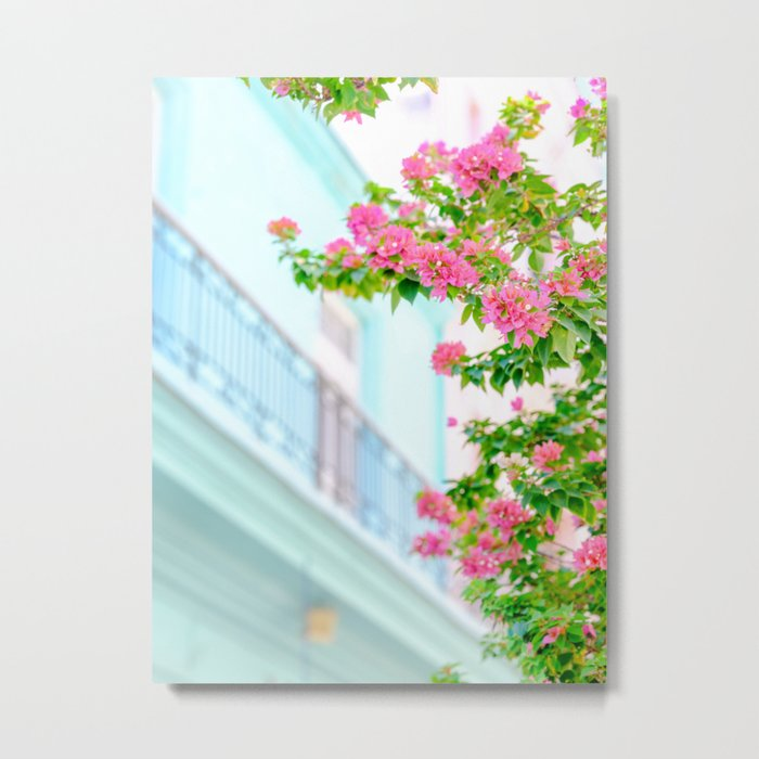 Colonial Havana Architecture with Pink Bougainvillea Metal Print
