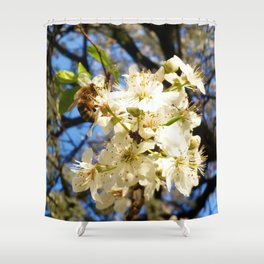 bees on flower Shower Curtain
