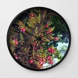 Monkey's Apricot Wall Clock