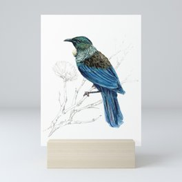 Tui, New Zealand native bird Mini Art Print