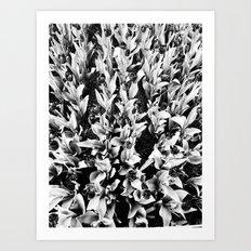 | alienation through agglomeration | Art Print