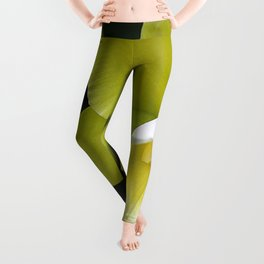 Cattleya Orchid Leggings