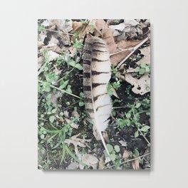Birds of a......(2) Metal Print