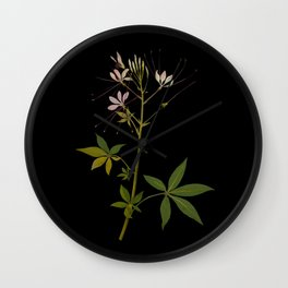 Cleome Pentaphylla (Tetradinamia Siliquosa) by Mary Delany Paper Collage Floral Flower Botanical Paper Mosaic Vintage Scientific Plant Anatomy Wall Clock