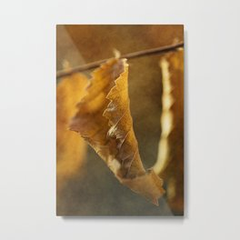 Autumn #9 Metal Print
