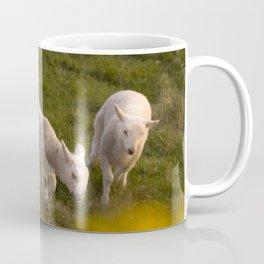 little lambs Coffee Mug