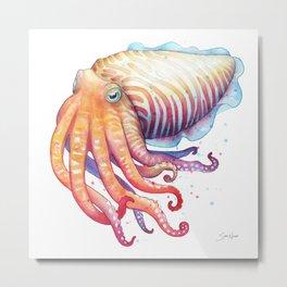 Cuttlefish Metal Print
