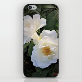White flower in Butchart's Garden iPhone Skin