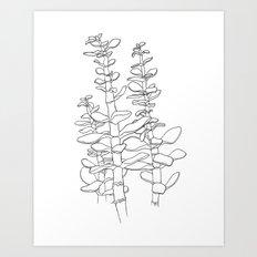 Jade Plant Print Art Print