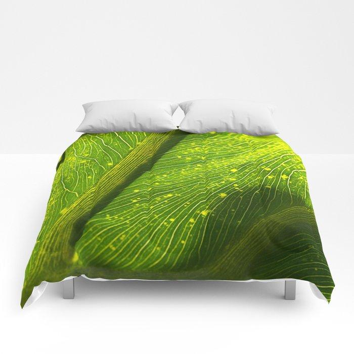 Spotted Leaf Comforters