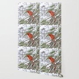 Snow Globe Cardinal (square) Wallpaper