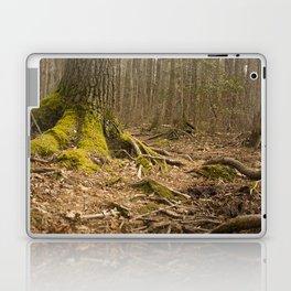 Mossy Woods - Ridge Hill Reserve Laptop & iPad Skin