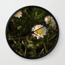Daisy Daisy Wall Clock
