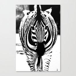 Bold Zebra Canvas Print