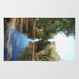 Copeland Creek 2 2012-11-28 Rug