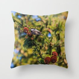 Bird on a spruce cone Throw Pillow