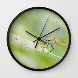 Traces of Spring Wall Clock